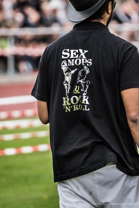 4. SÜDDEUTSCHES MOPS- UND BULLDOGGENRENNEN, 03.-04.09.2016, Neckartalstadion, Wernau