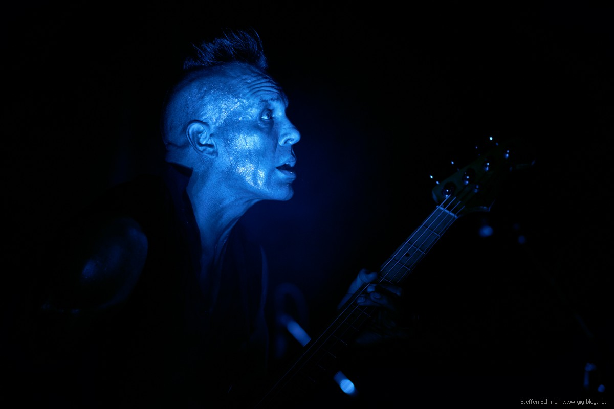 The Membranes